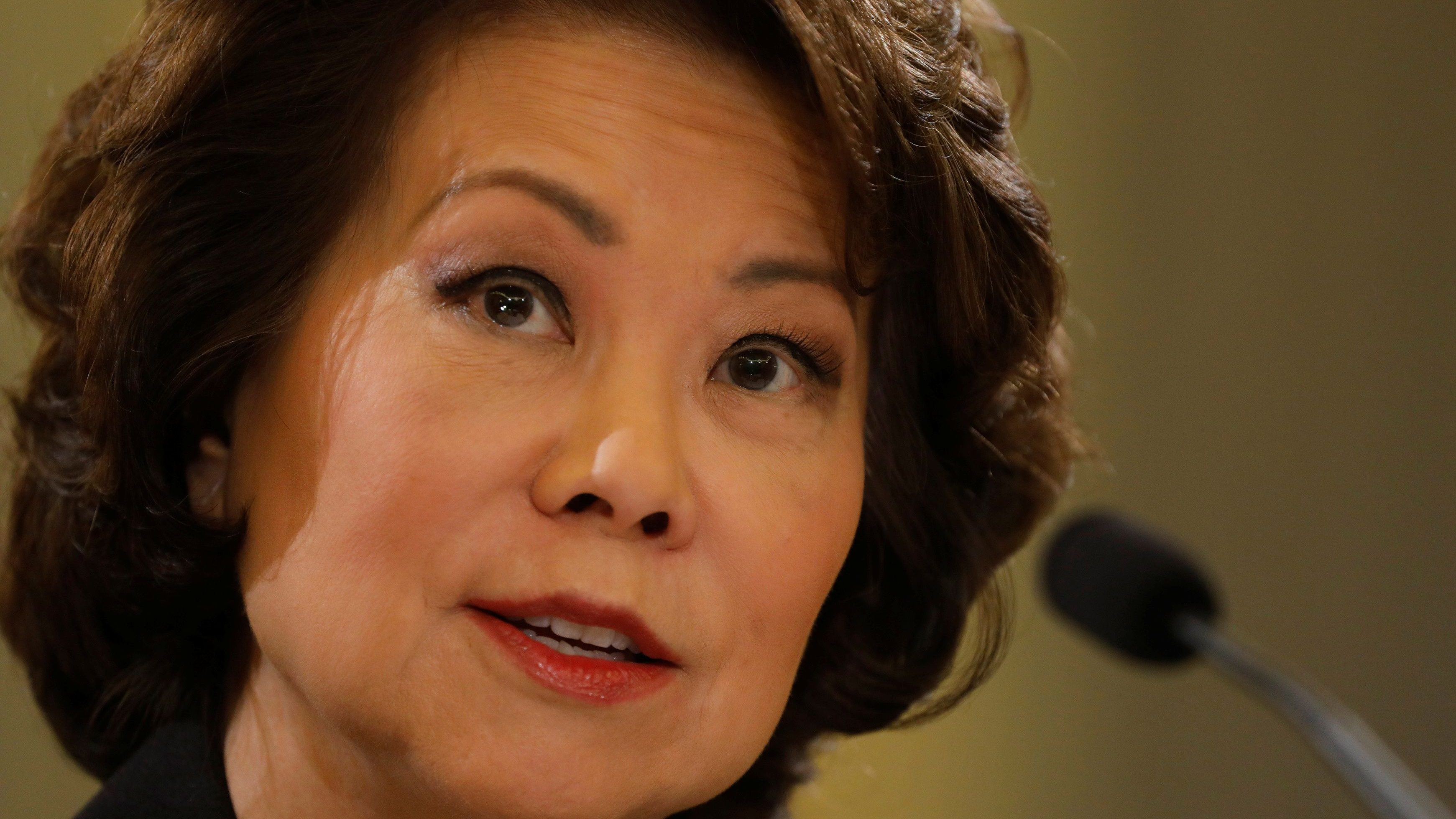 U.S. Secretary of Transportation Elaine Chao