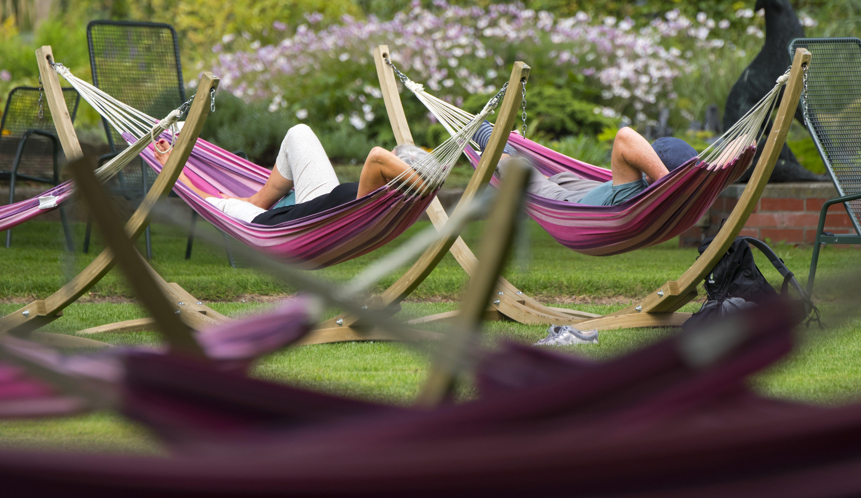 hammock in parks