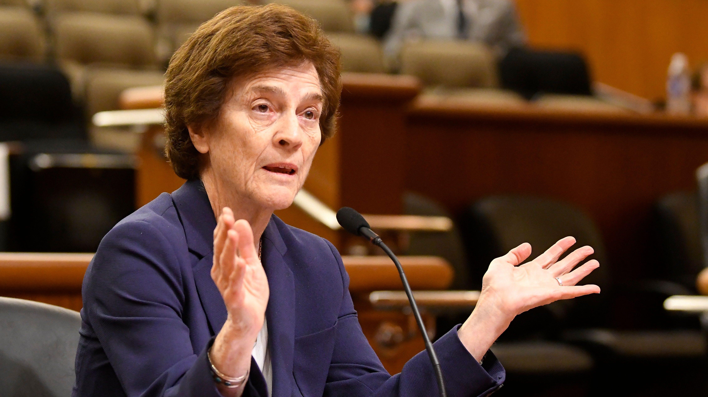 Elizabeth Holtzman, speaks to legislative leaders