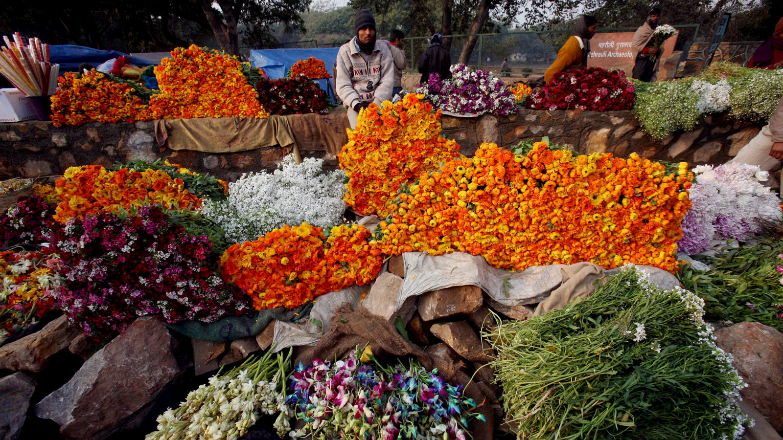 An Indian flower vendor (C) displays his flowers while waiting for customers at a flower market in New Delhi, India, 03 February 2008. Delhi is the epicenter of India's enormous flower traffic and is Asia's largest flower market. The flowers exported from Delhi grace the tables of developed countries all across the globe. Delhi is the convergence point of flower dealers. Flower traders in other major Indian cities have contact with flower traders in Delhi and not with the flower traders at the point of origination of the flowers. While a majority of Indian flowers blooming in the fields are certainly at par in quality to the ones grown in Europe, the problem begins the moment they're cut and commence their journey to the market. Improper handling after harvest, unavailability of optimum temperature and moisture conditions during storage and transportation, under or over-packaging leading to damage and wiltering are a few factors which have an adverse impact on the quality of Indian flowers reaching the consumer - both domestic and international. India's flower production stands at around 1000 tonnes per annum and most of the flower trade occur in the Delhi region.