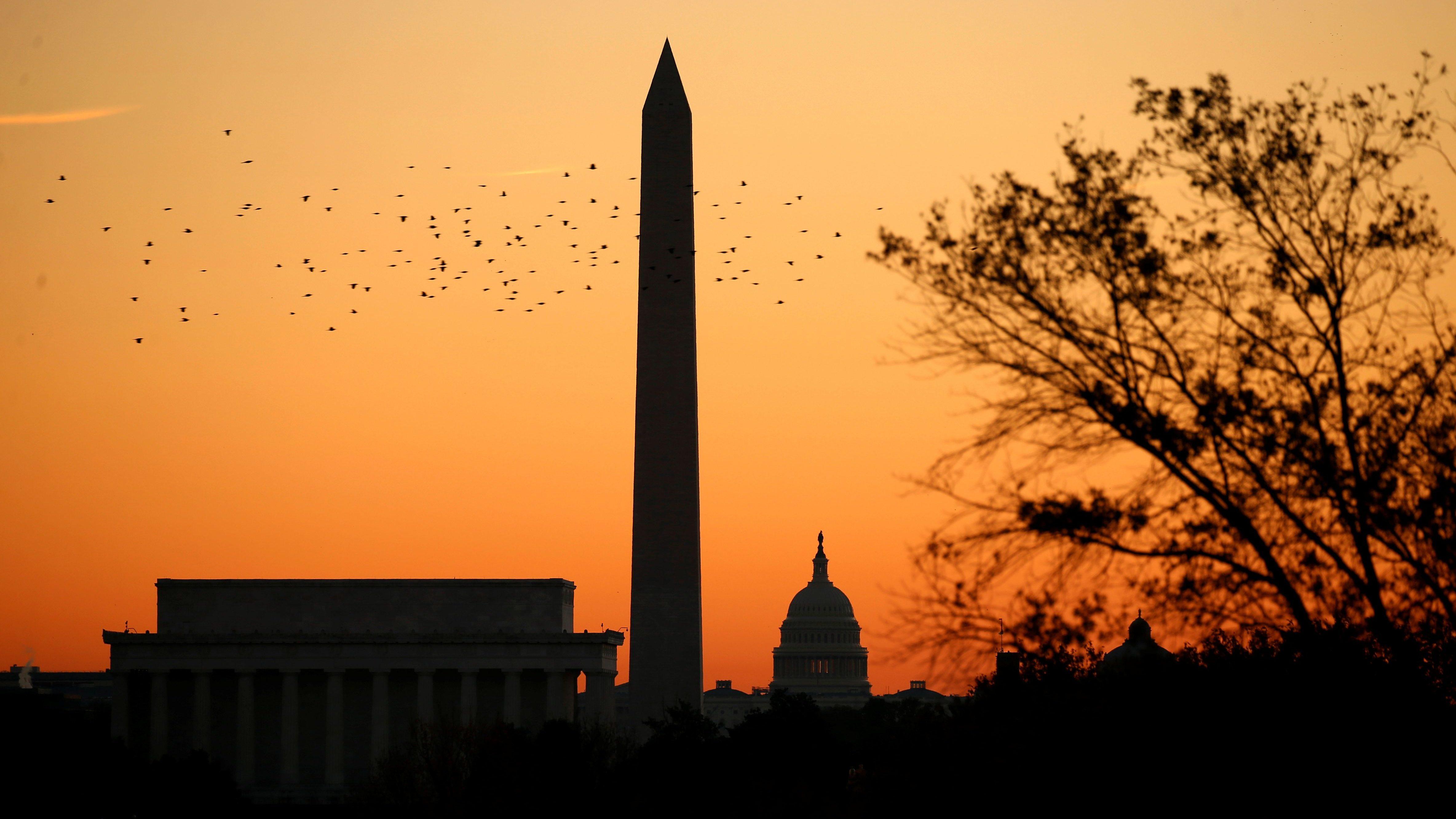 Birds fly over Washington skyline at sunrise on election day