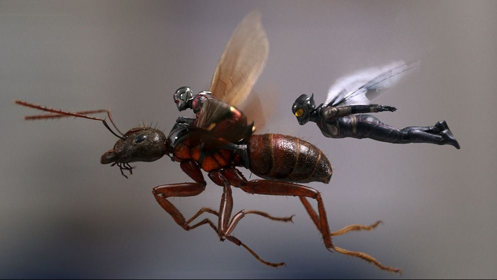 Ant-man, the Wasp, and an ant soaring into battle.