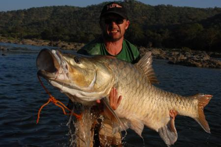 Hump-backed mahseer