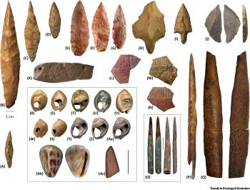 Early tools that humans used.