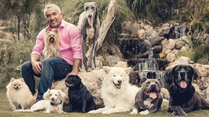 TV's dog whisperer, Cesar Millan.