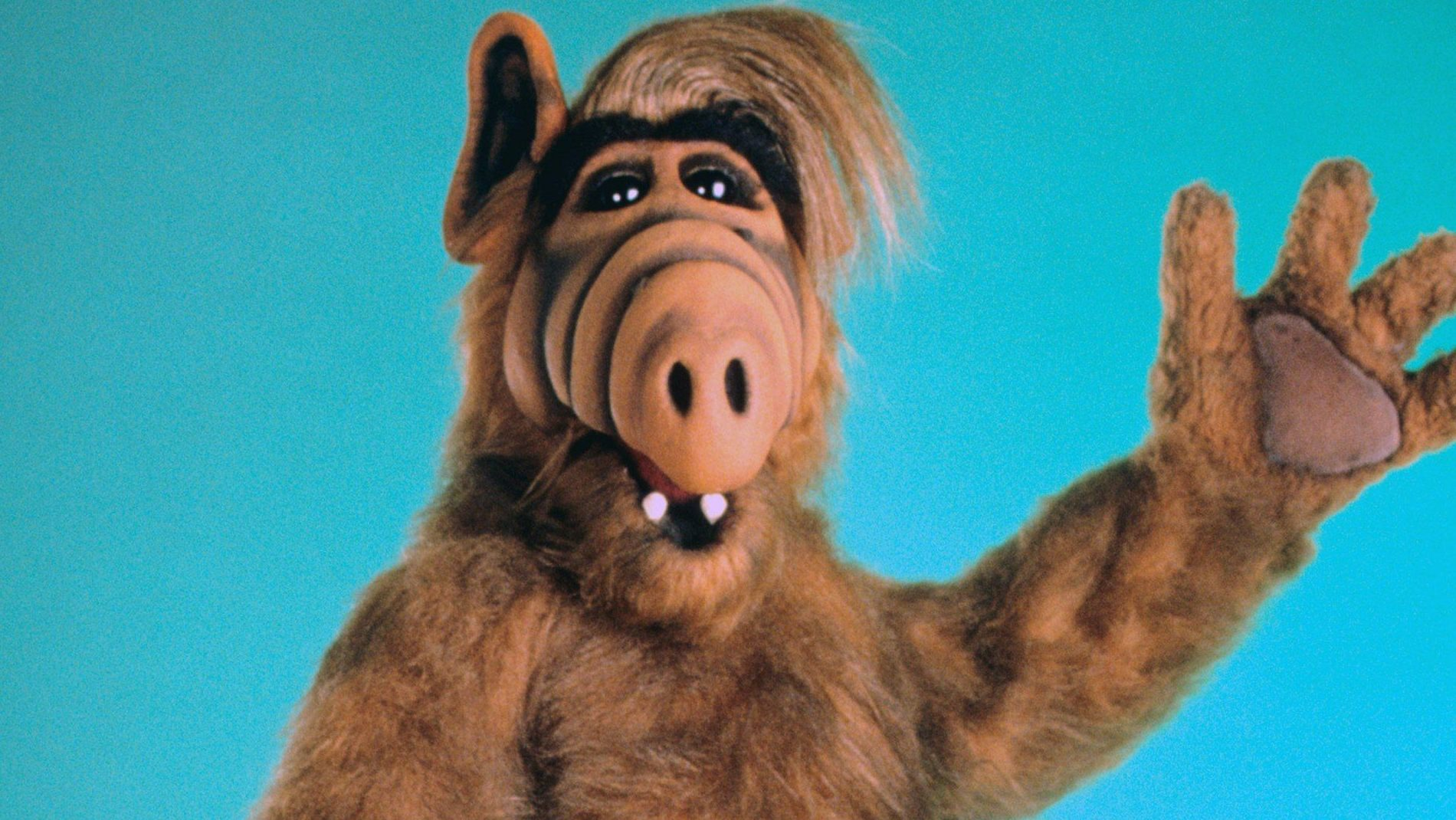 Alf Is The Latest 1980s Sitcom To Get A Tv Reboot Quartzy