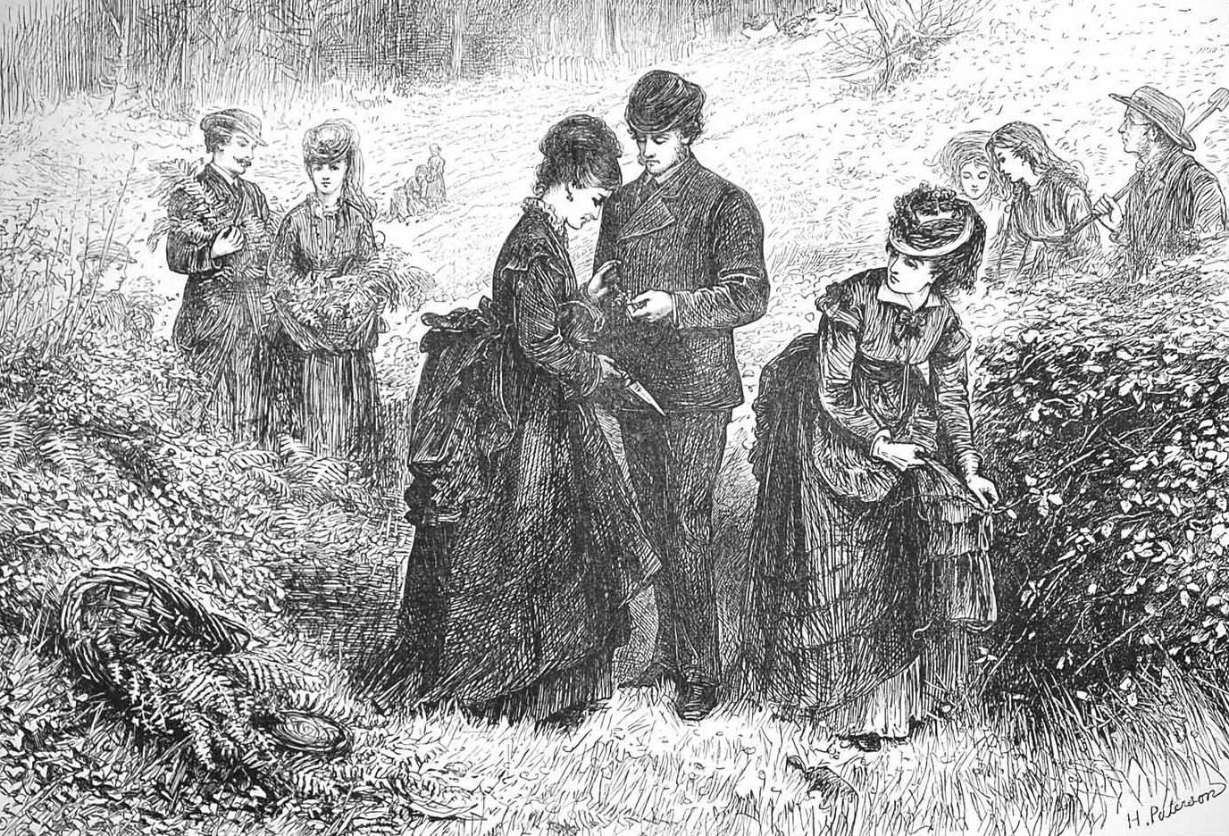 """""""Gathering Ferns,"""" from The Illustrated London News, July 1, 1871, by Helen Paterson Allingham."""