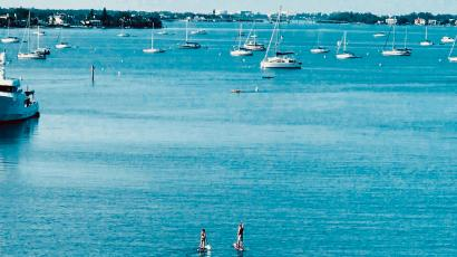Bay and boats.