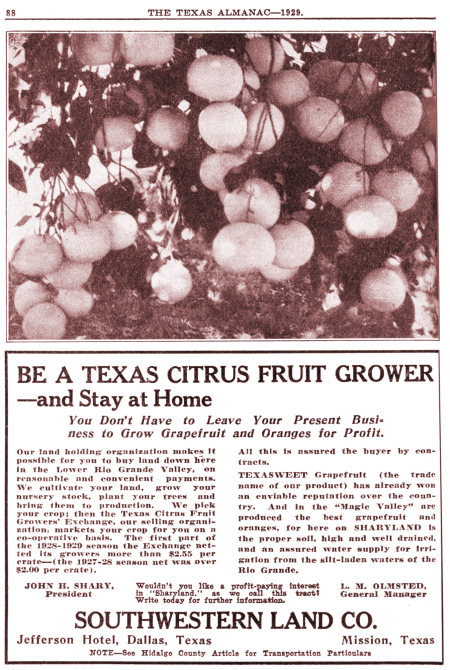 An advertisement selling land on which to grow citrus in the Lower Rio Grande Valley, published in the 1929 edition of the Texas Almanac.