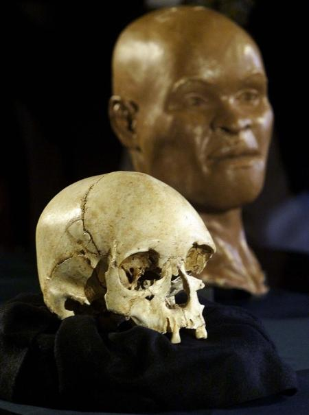 A skull from a woman who lived 11,500 years ago is unveiled at the National Museum in Rio de Janeiro