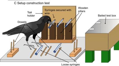 Don't know how to assemble Ikea furniture? Consider calling a crow