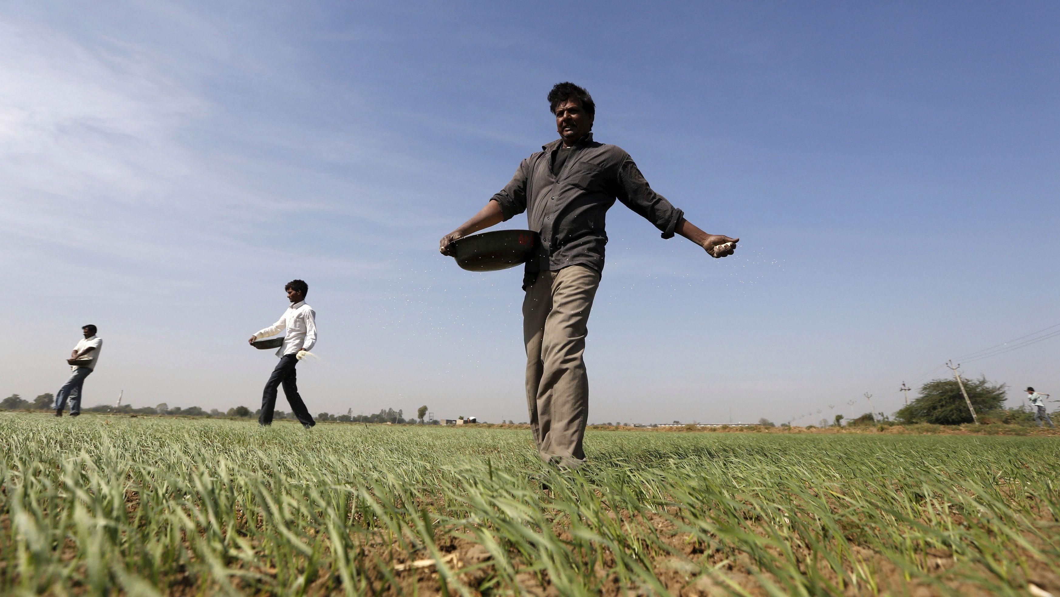 Framers-Soil-agriculture