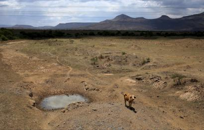 Climate Change: Life in southern Africa becoming untenable