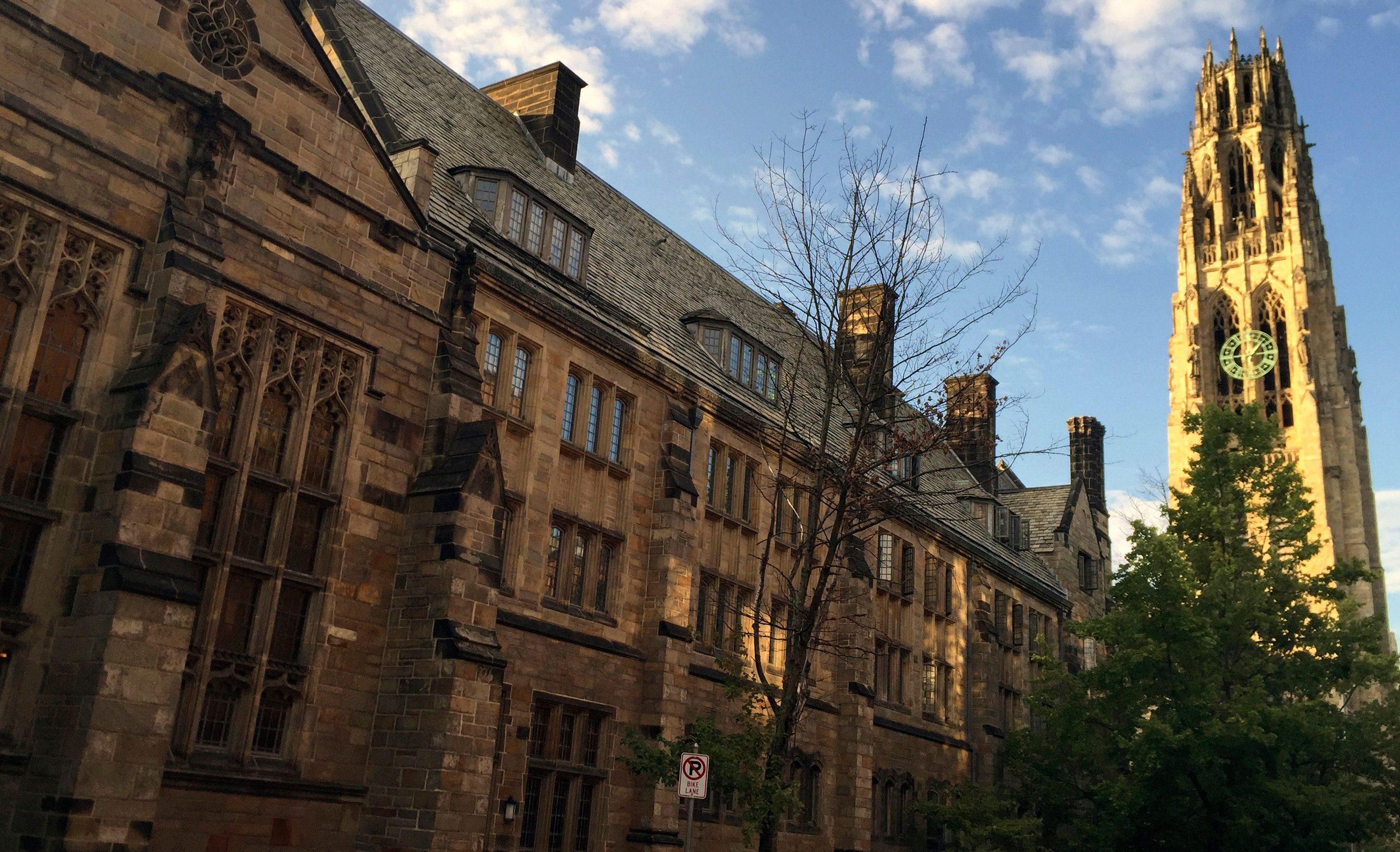 The secret behind the Ivy League's high endowment returns