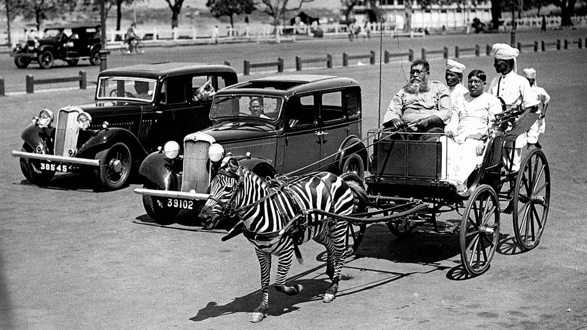 From a zebra-drawn buggy to Chinatown, rare photos offer a new look at Kolkata