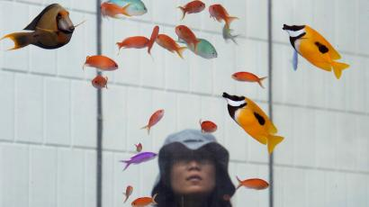 A woman watches tropical fish from Okinawan sea on display in a glass tank placed outside Sony Building at Tokyo's Ginza shopping district Monday, Aug. 31, 2015. (AP Photo/Koji Sasahara)