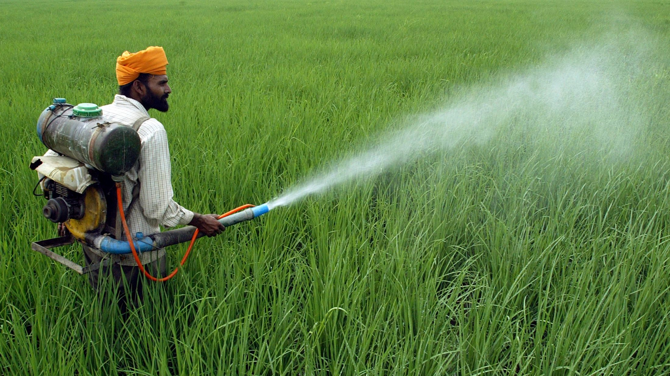 Image result for pesticides used in india