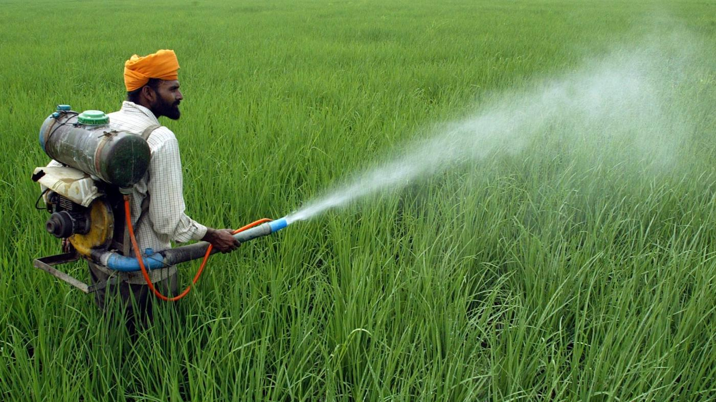 Scientists develop a gel to protect Indian farmers from