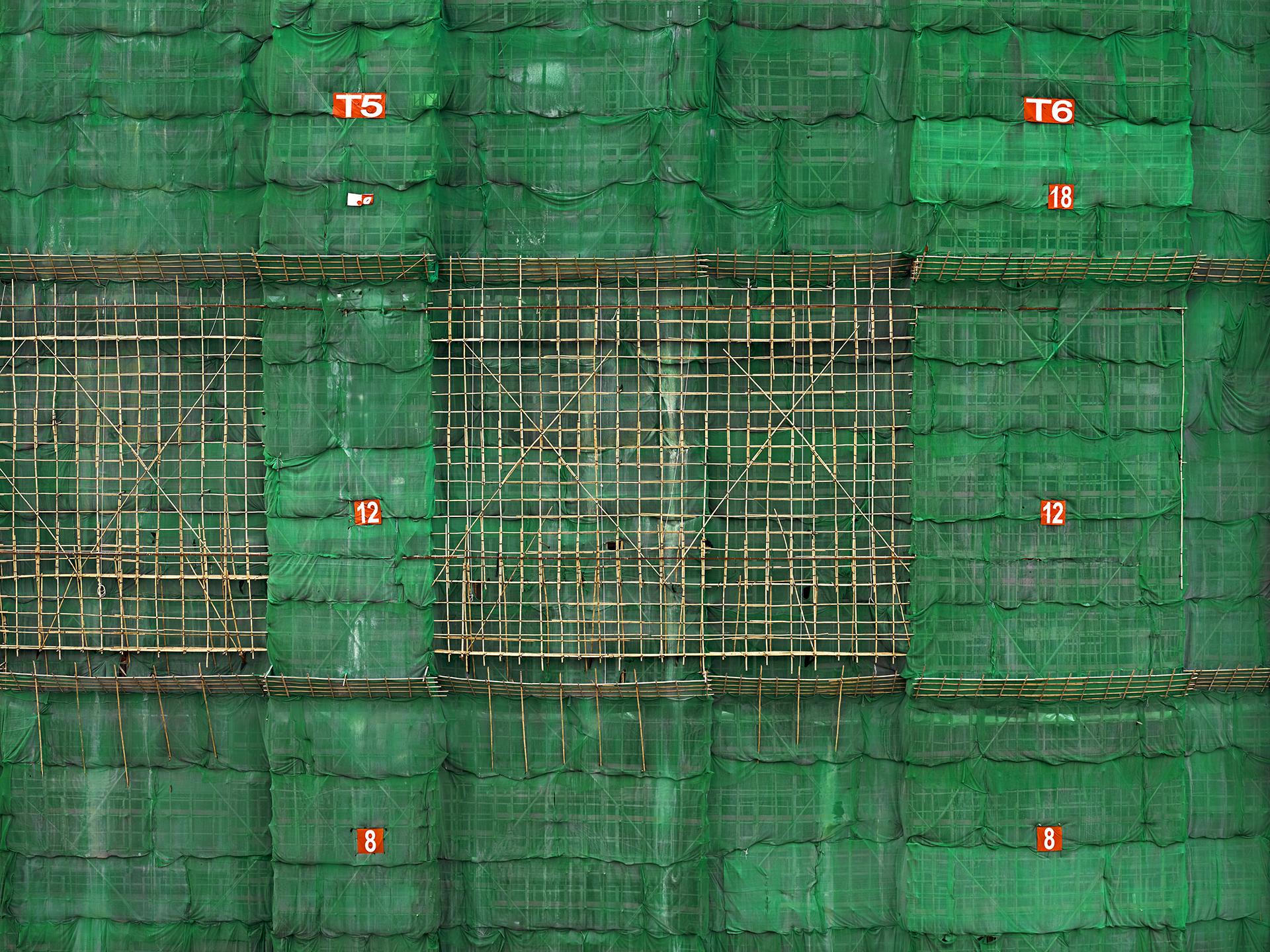 Photographer captures beauty of Hong Kong's bamboo