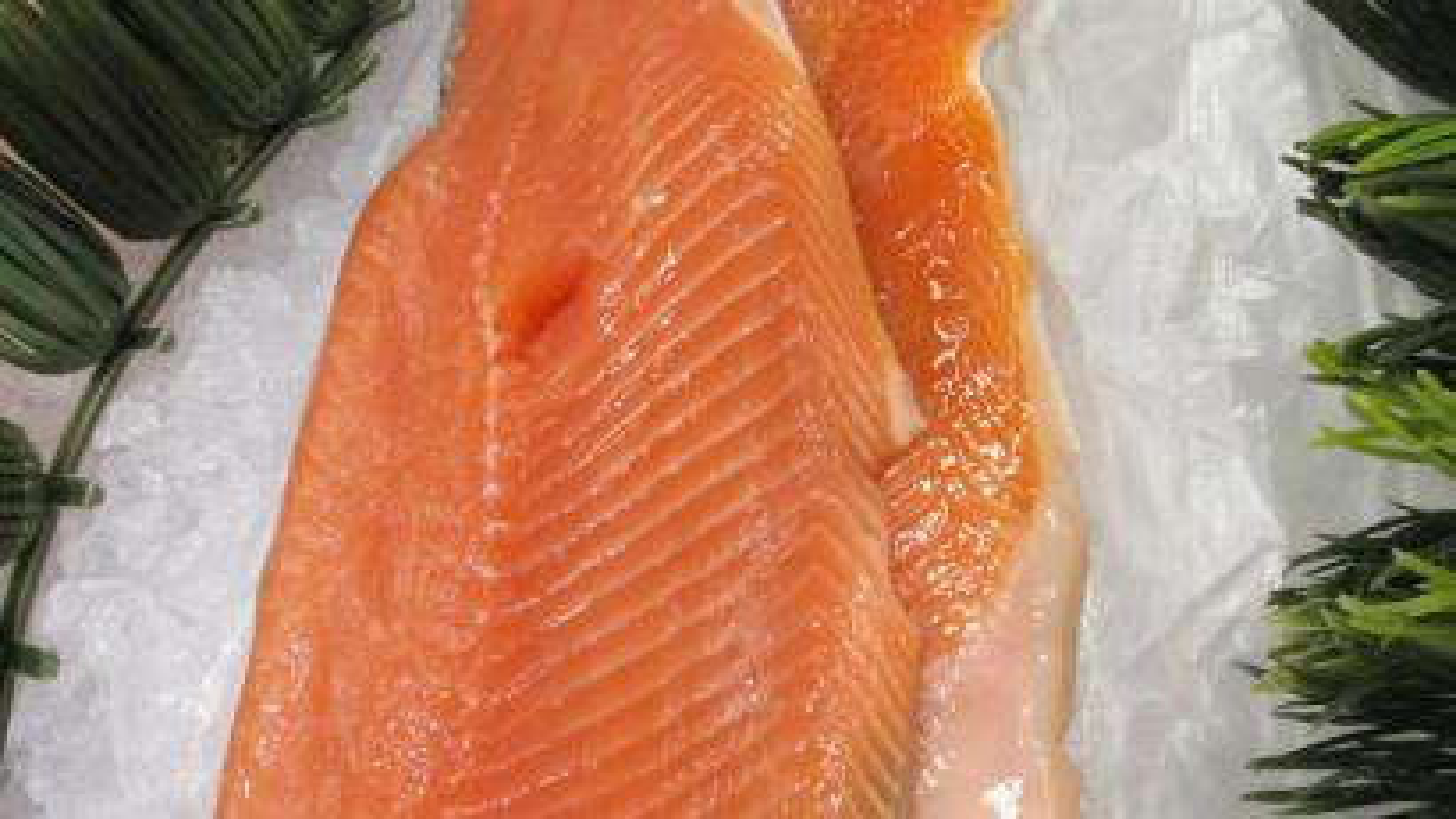 Raw salmon on ice.