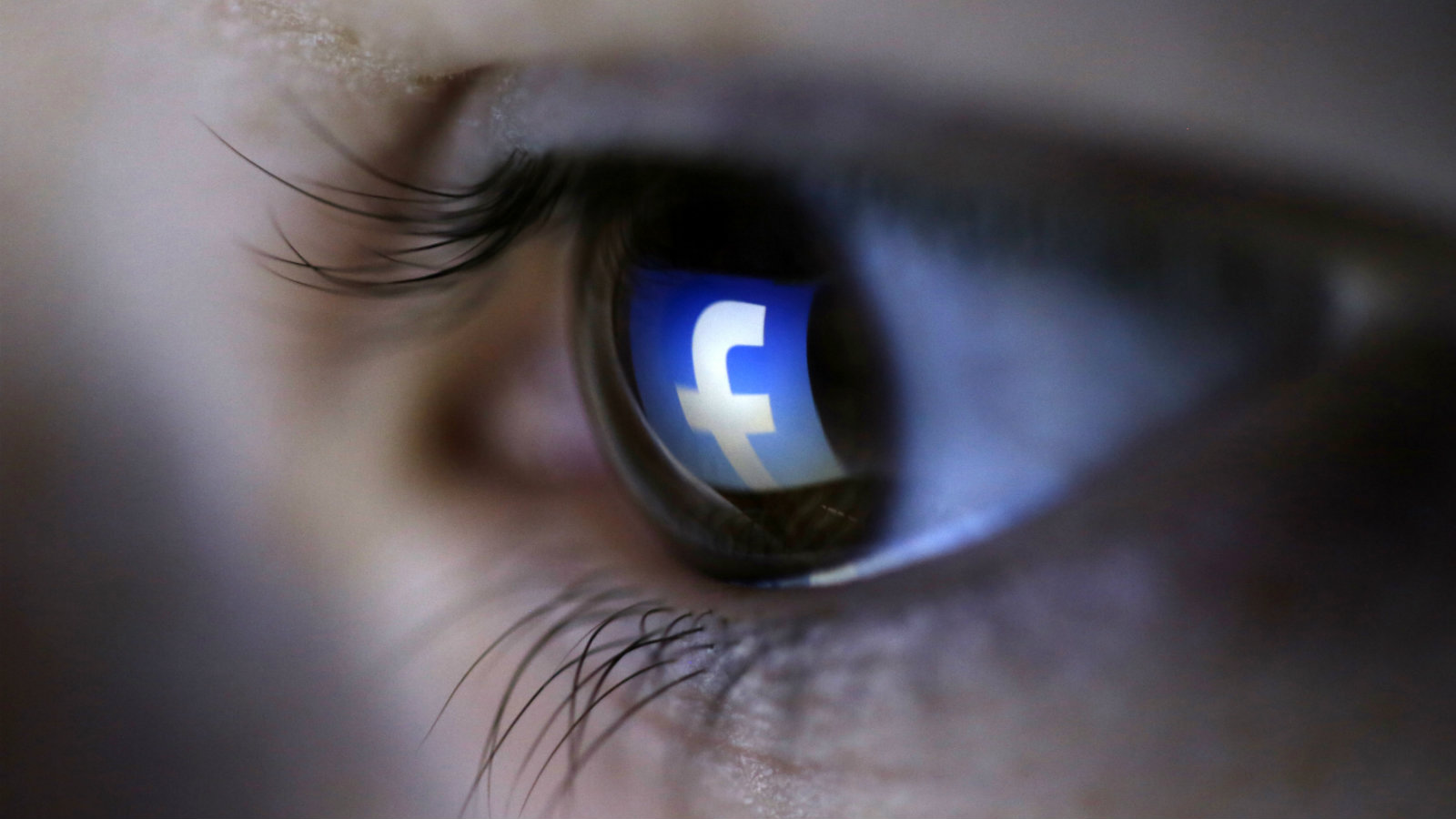 India-elections-fake-news-political-ads-Facebook