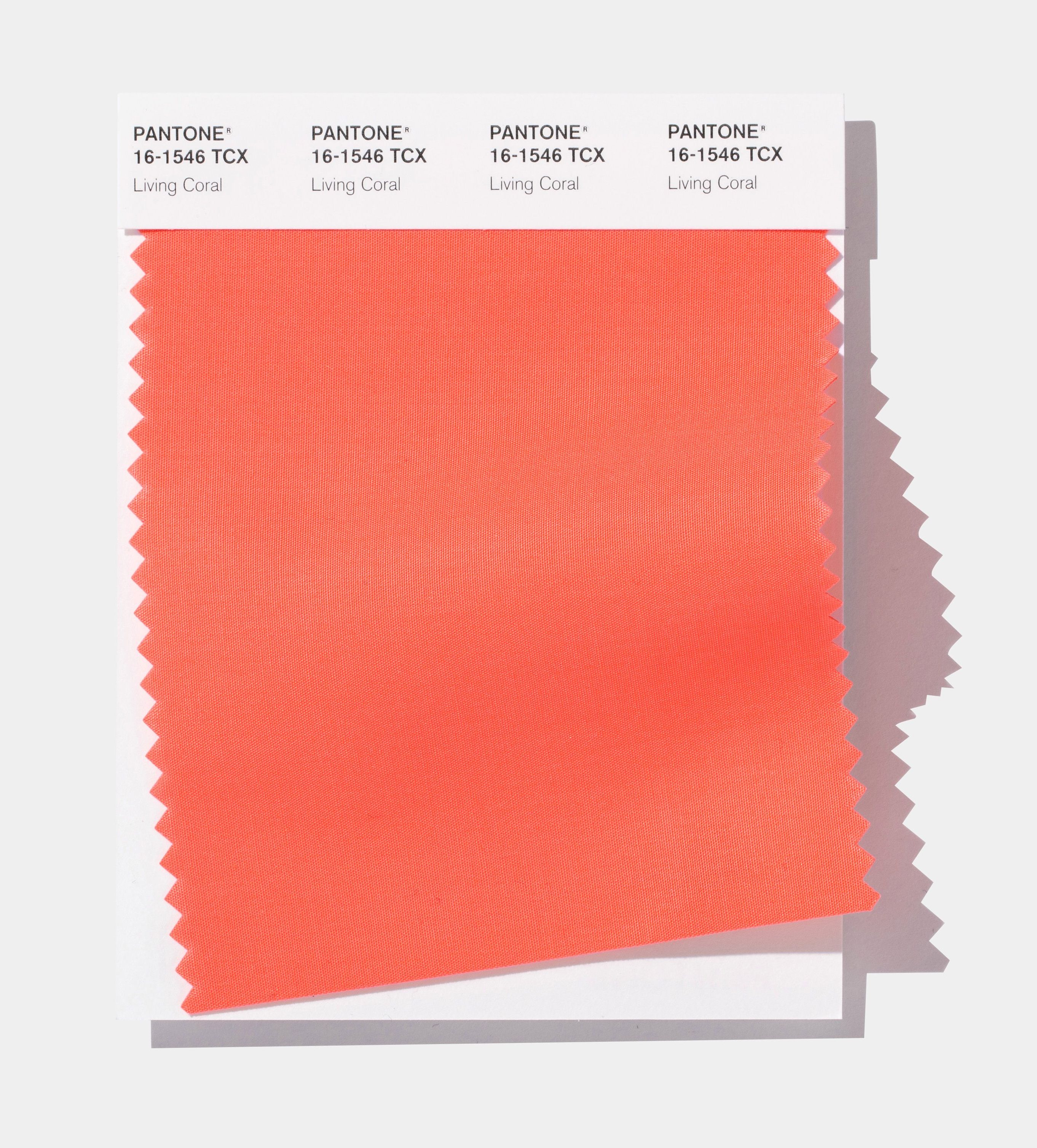The 2019 Pantone Color Of The Year Is Living Coral Quartz,How To Clean A Kitchen Sink Drain That Smells