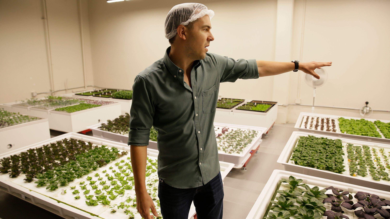 Robotic indoor farm