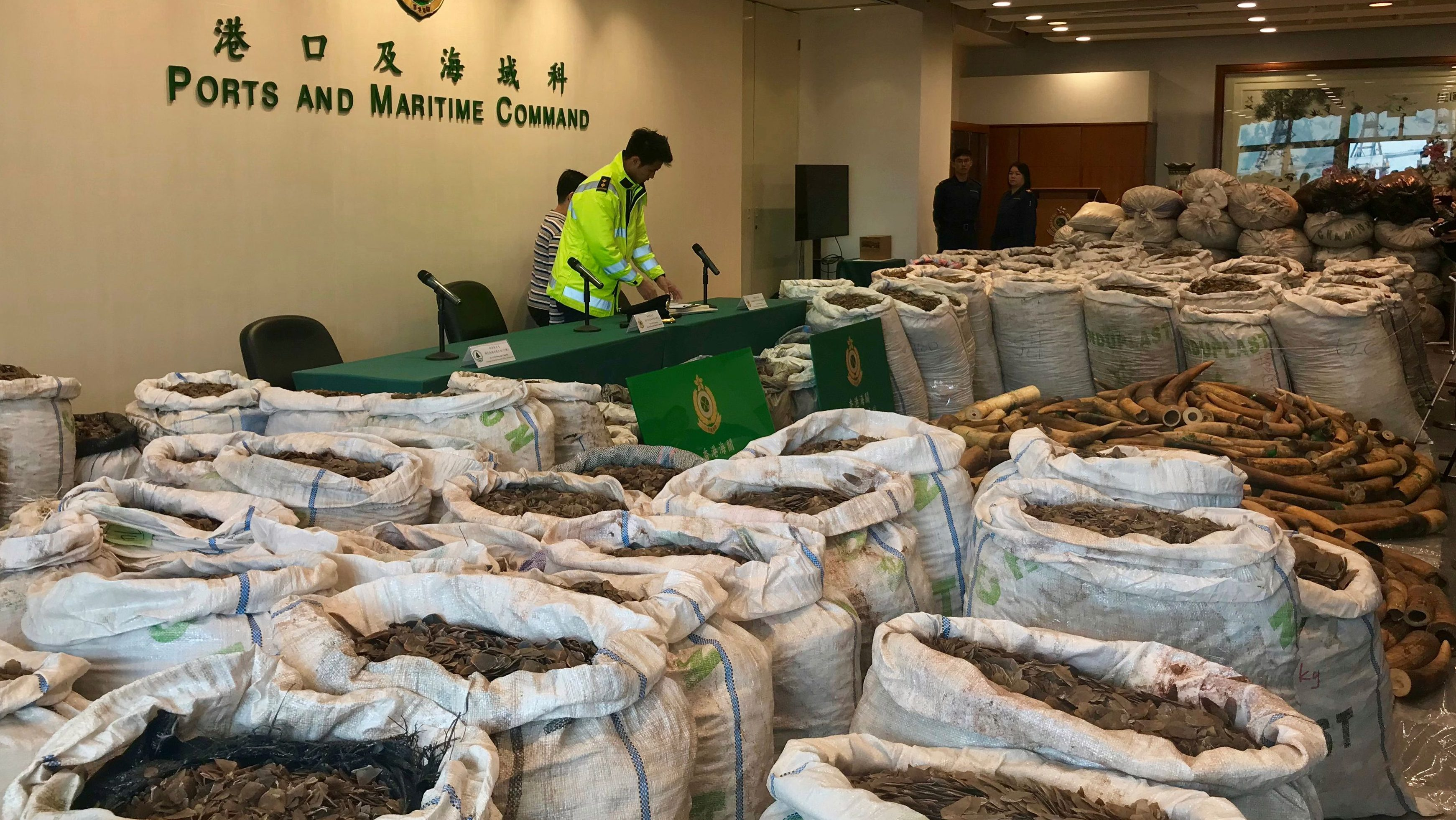 Ivory tusks and pangolin scales seized by Hong Kong Customs are seen at a news conference in Hong Kong, China, February 1, 2019.