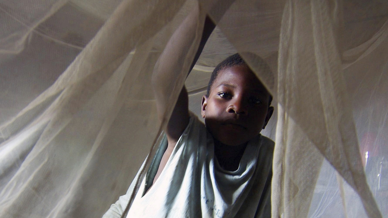 Malaria: cosmetics from Burundi are the latest push to eradication
