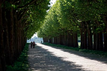 An elderly couple enjoy a walk at the Parc de l'observatoire in Meudon, near Paris, as warm and sunny weather continues in France