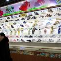 A guide stands in a product exhibition room at Ryuwon Shoe Factory that specializes in sports footwear, in Pyongyang, North Korea, Friday, Feb. 1, 2019. (AP Photo/Dita Alangkara)