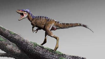 An artists' rendering of a Moros intrepidus.