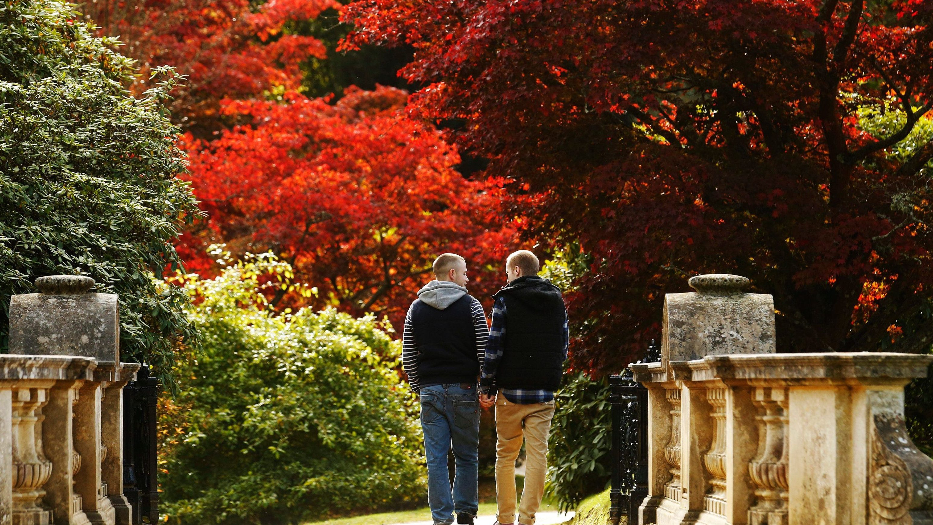 Two men walk hand in hand past changing autumn leaves in Sheffield Park Gardens near Haywards Heath in southern England