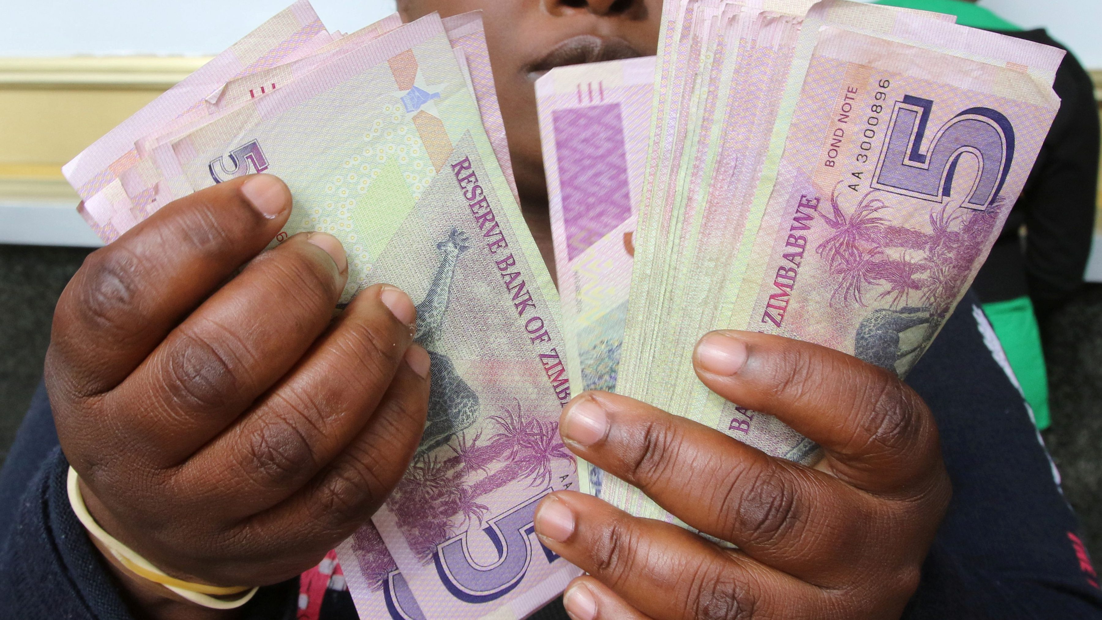 Zimbabwe S New Currency Plans Will Fail Say Economists