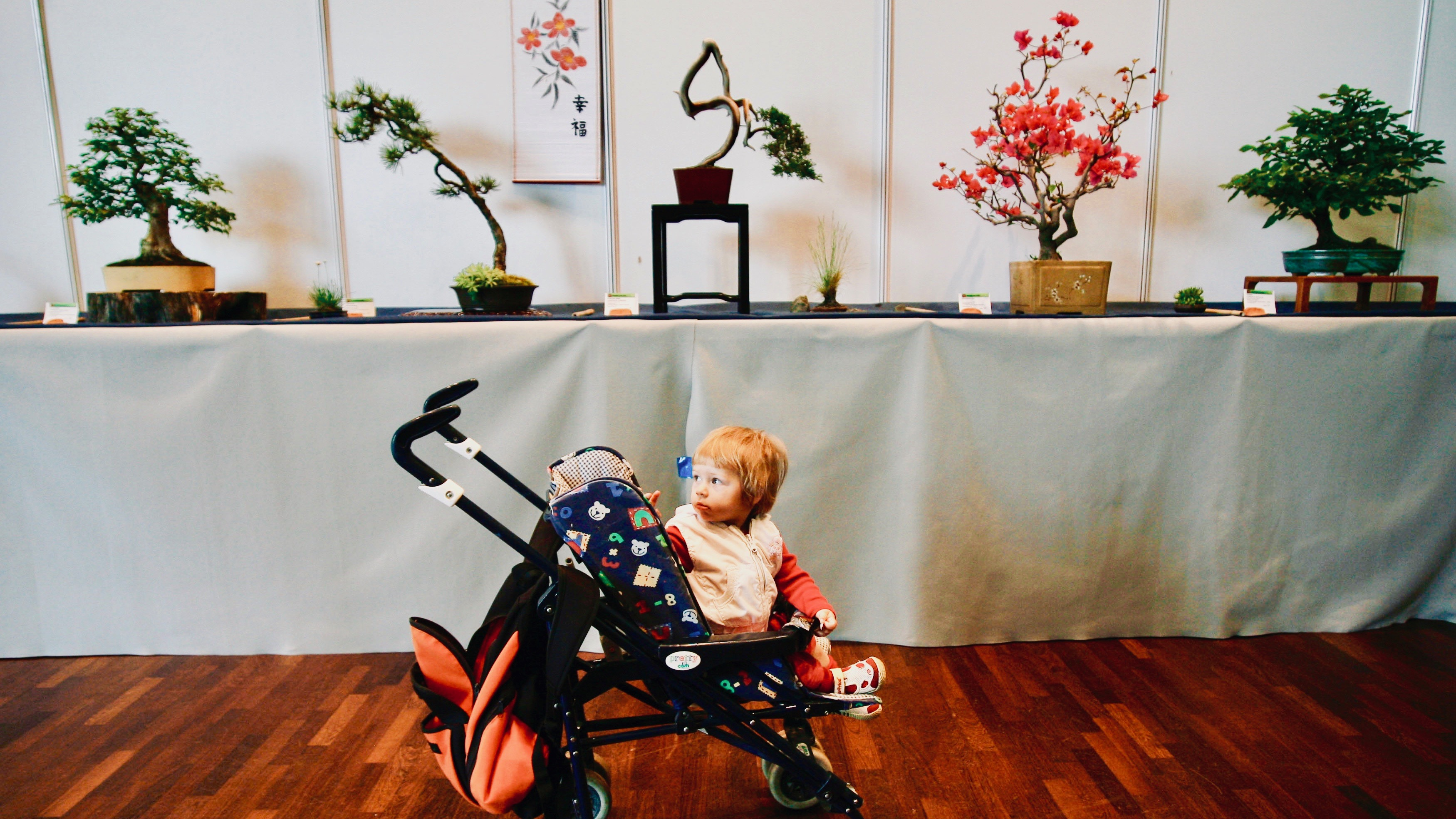 There's a good reason bonsai growers think of trees as their children