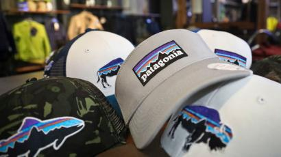 Patagonia logo on baseball cap