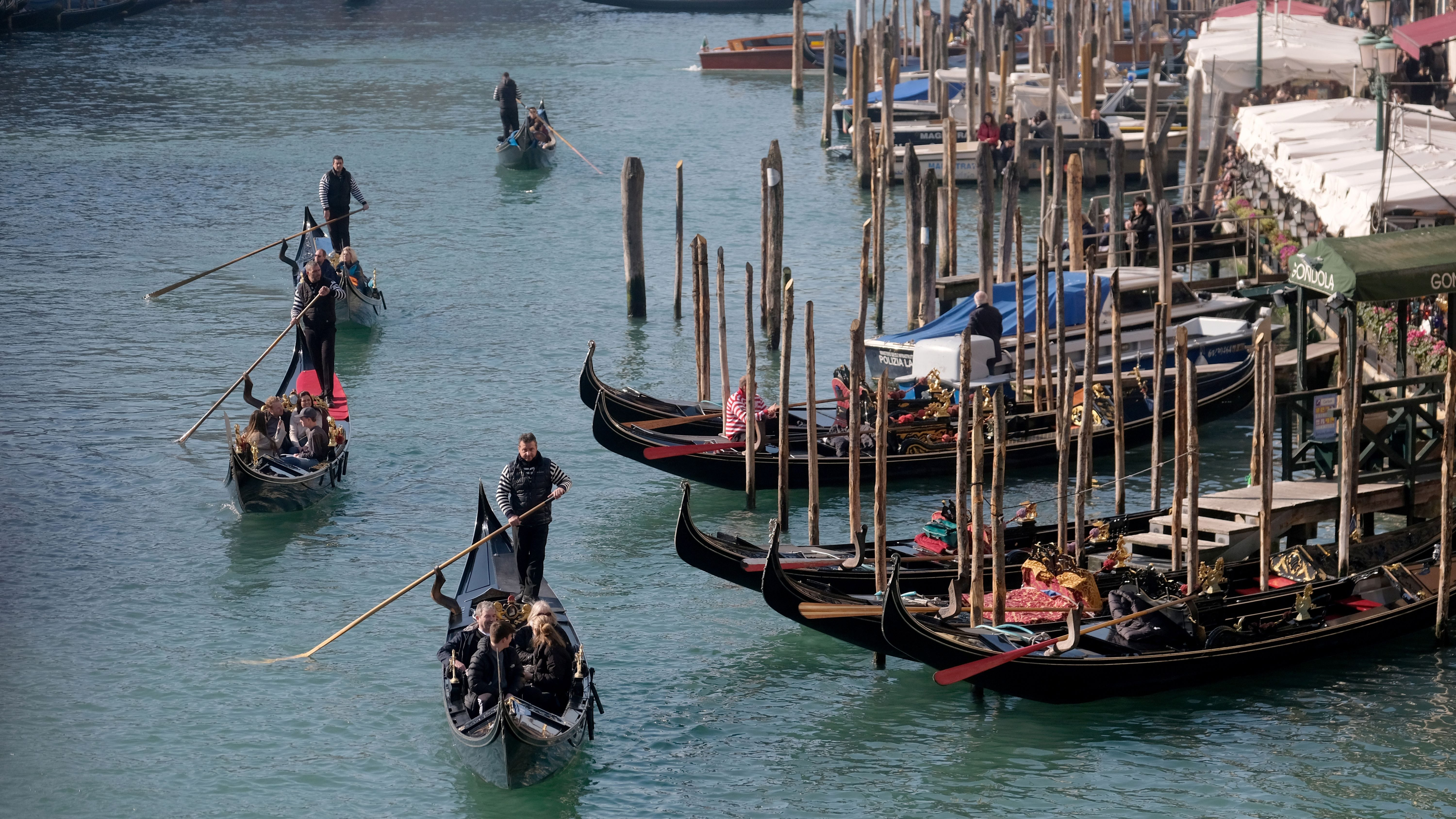 Gondoliers row along the Grand Canal during carnival season in Venice