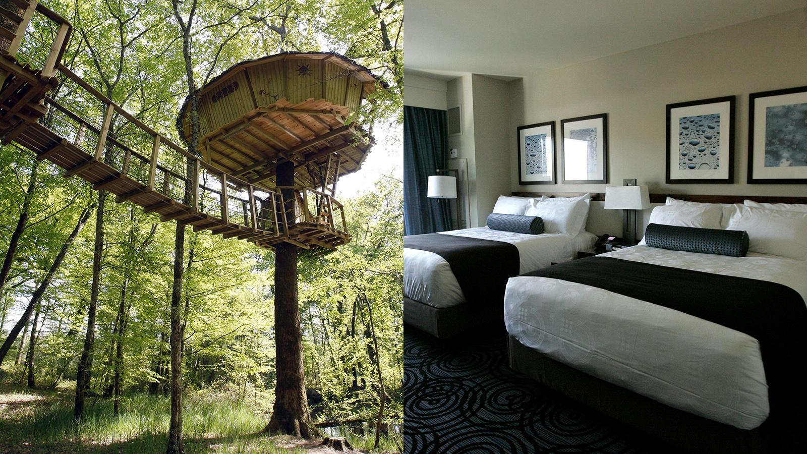 tree house versus hotel room