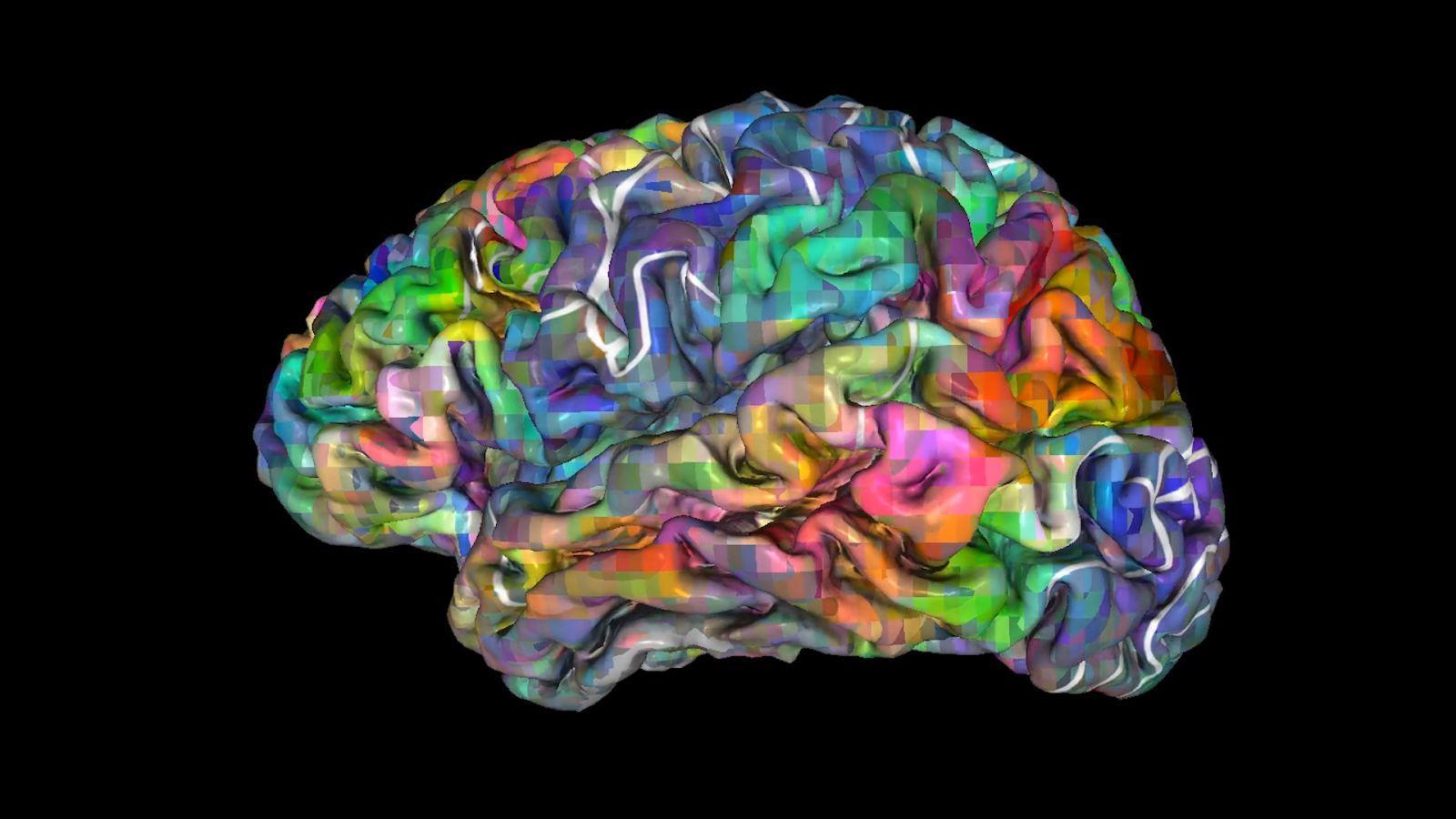 Neuroscientists can read brain activity