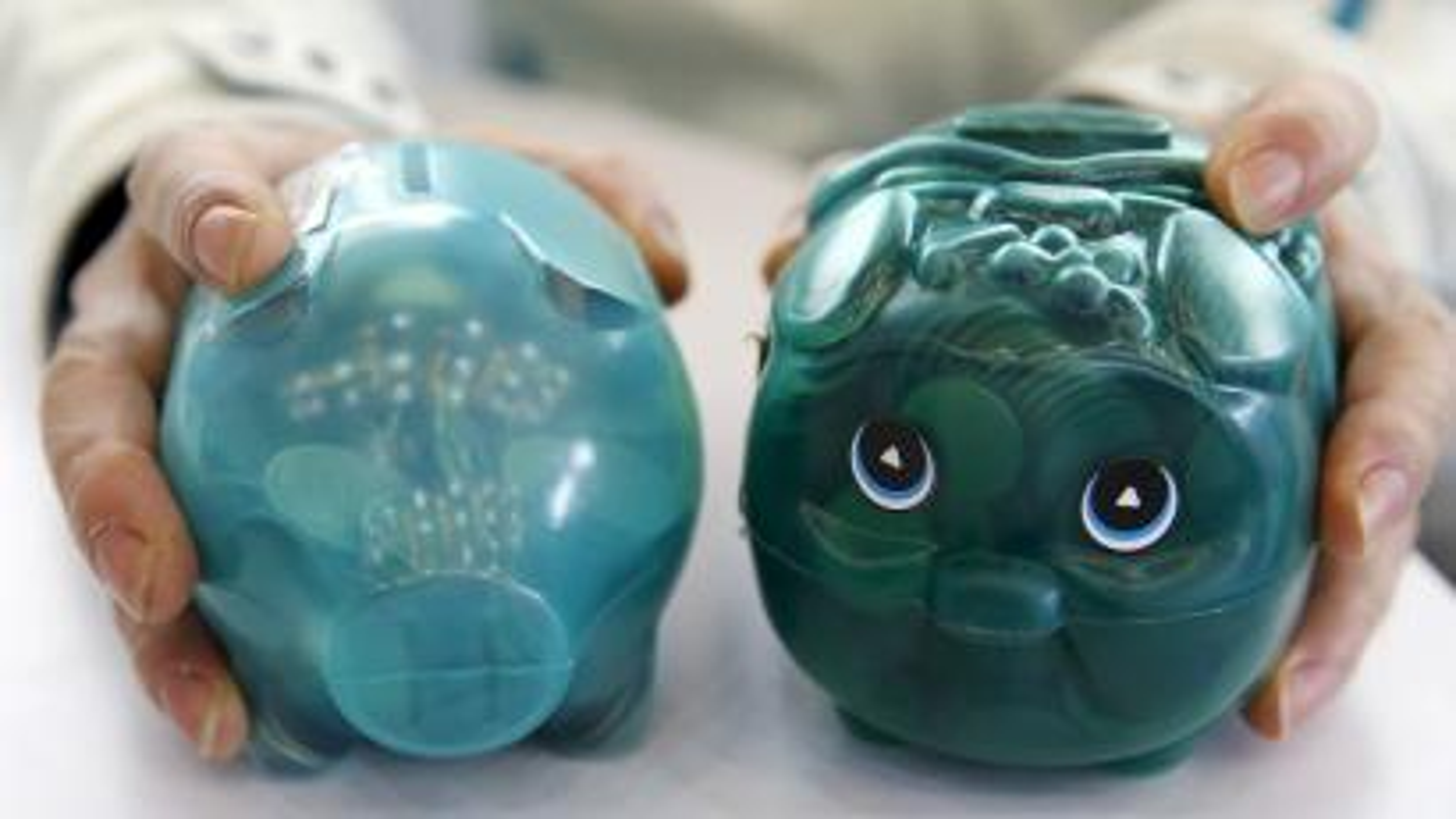 Piggy banks savings.
