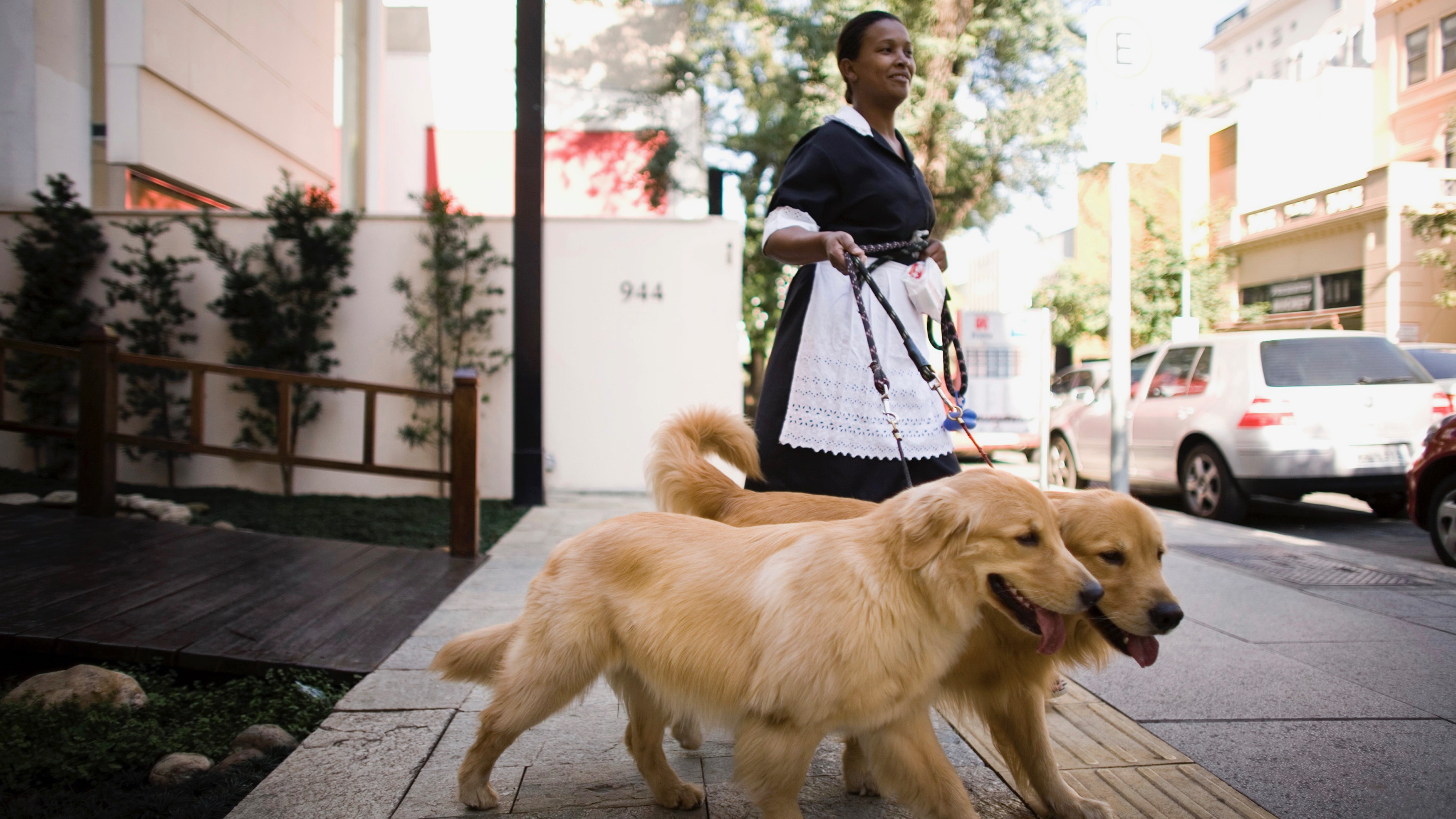 A maid in Sao Paulo, Brazil walks dogs along posh Oscar Freire street.