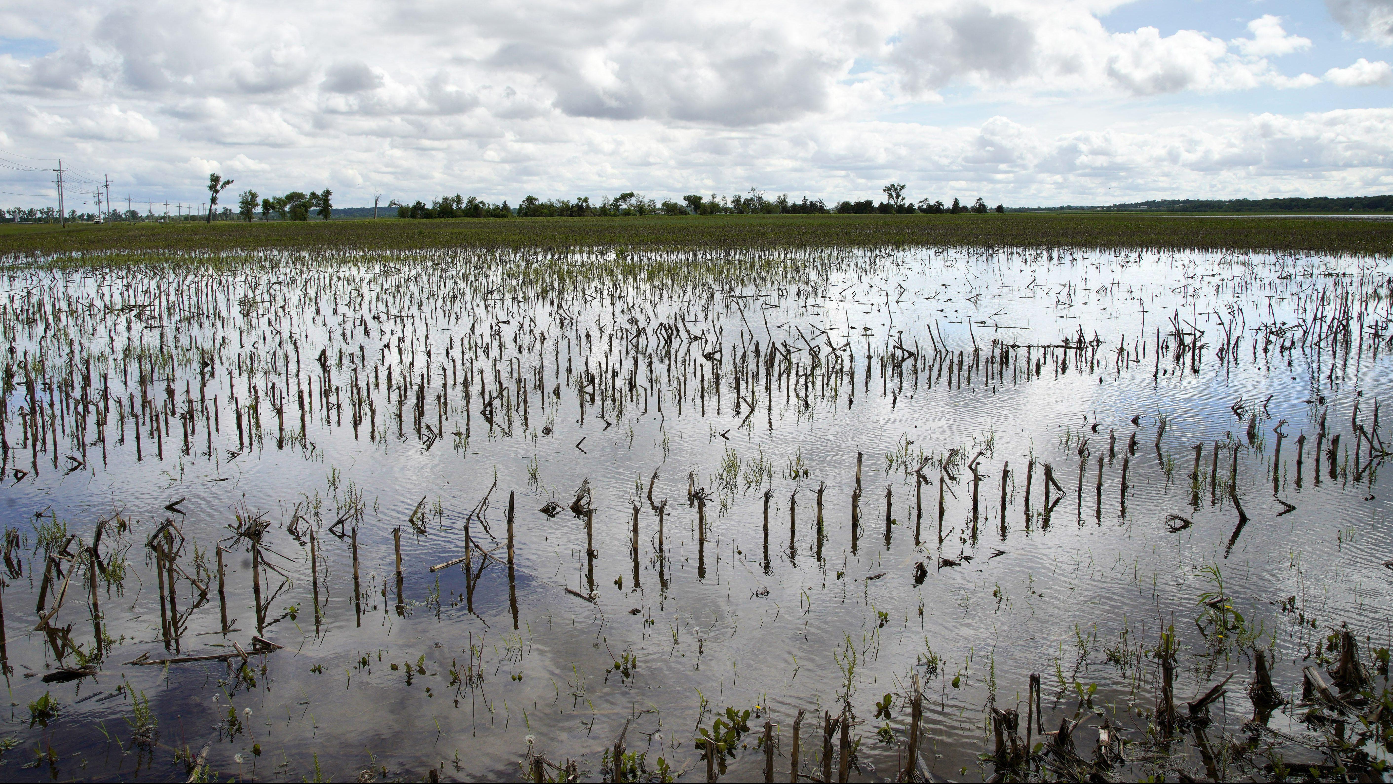 Flooded US farms