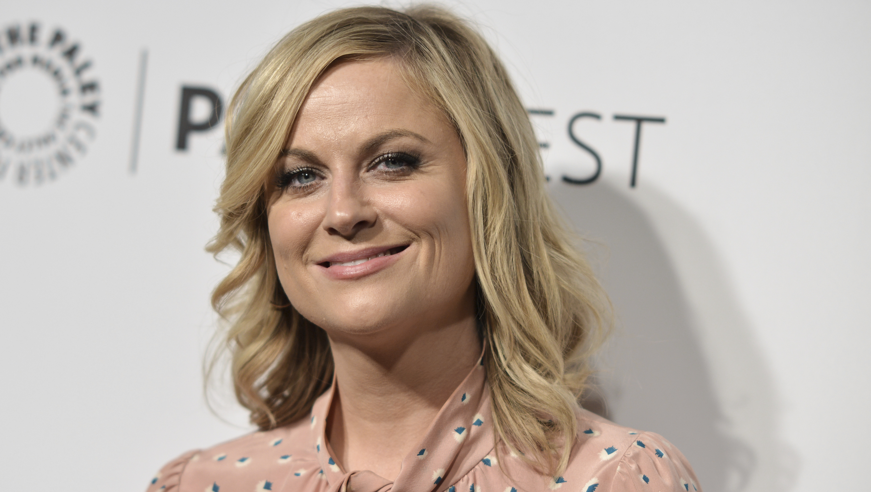 """Amy Poehler says it's a bad idea to hire a """"genius"""""""