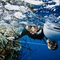 A diver attaches a GPS tracker onto ghost fishing nets.
