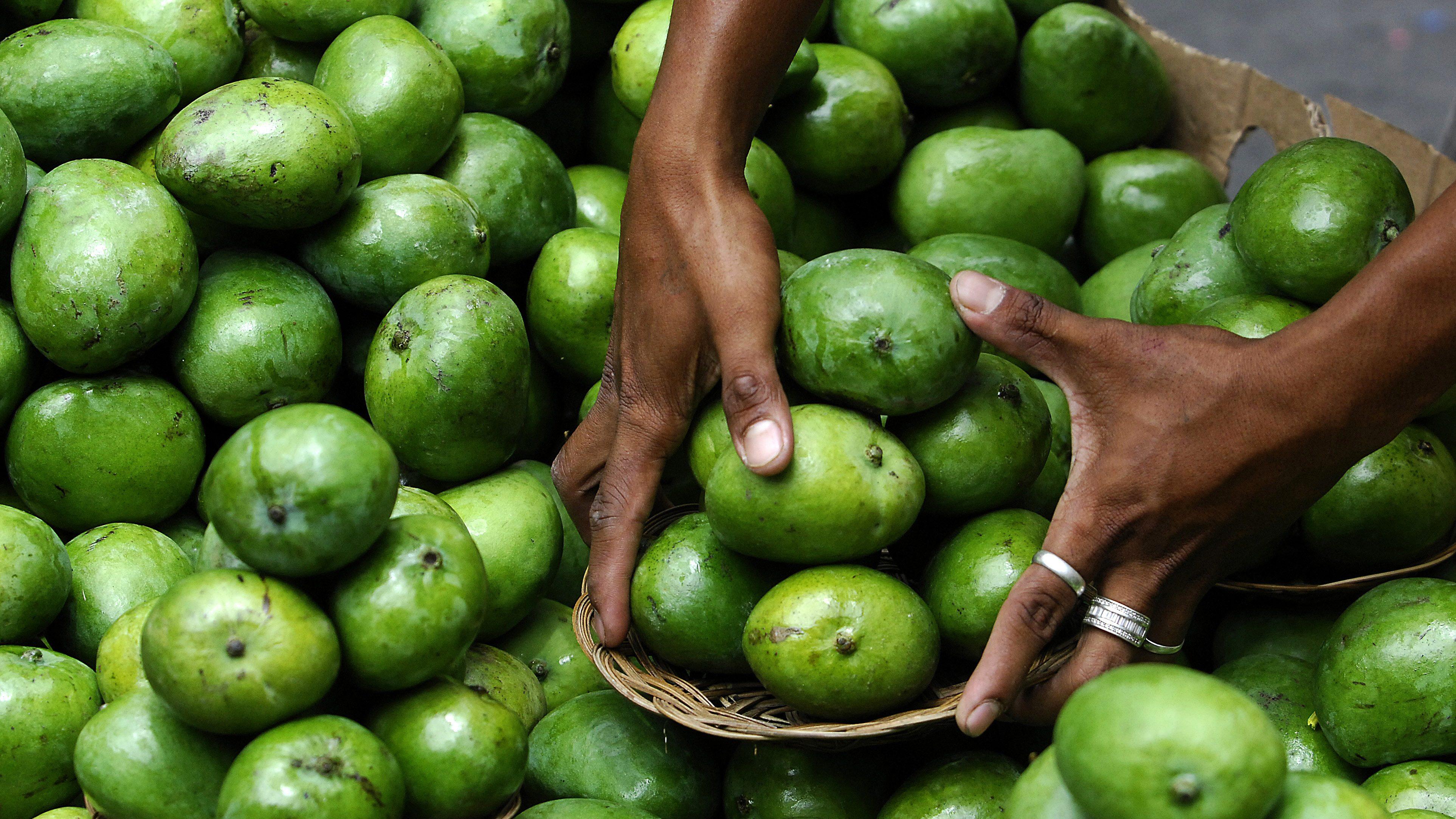 How Philippines Plans To Sell Mango Bumper Crop Quartz