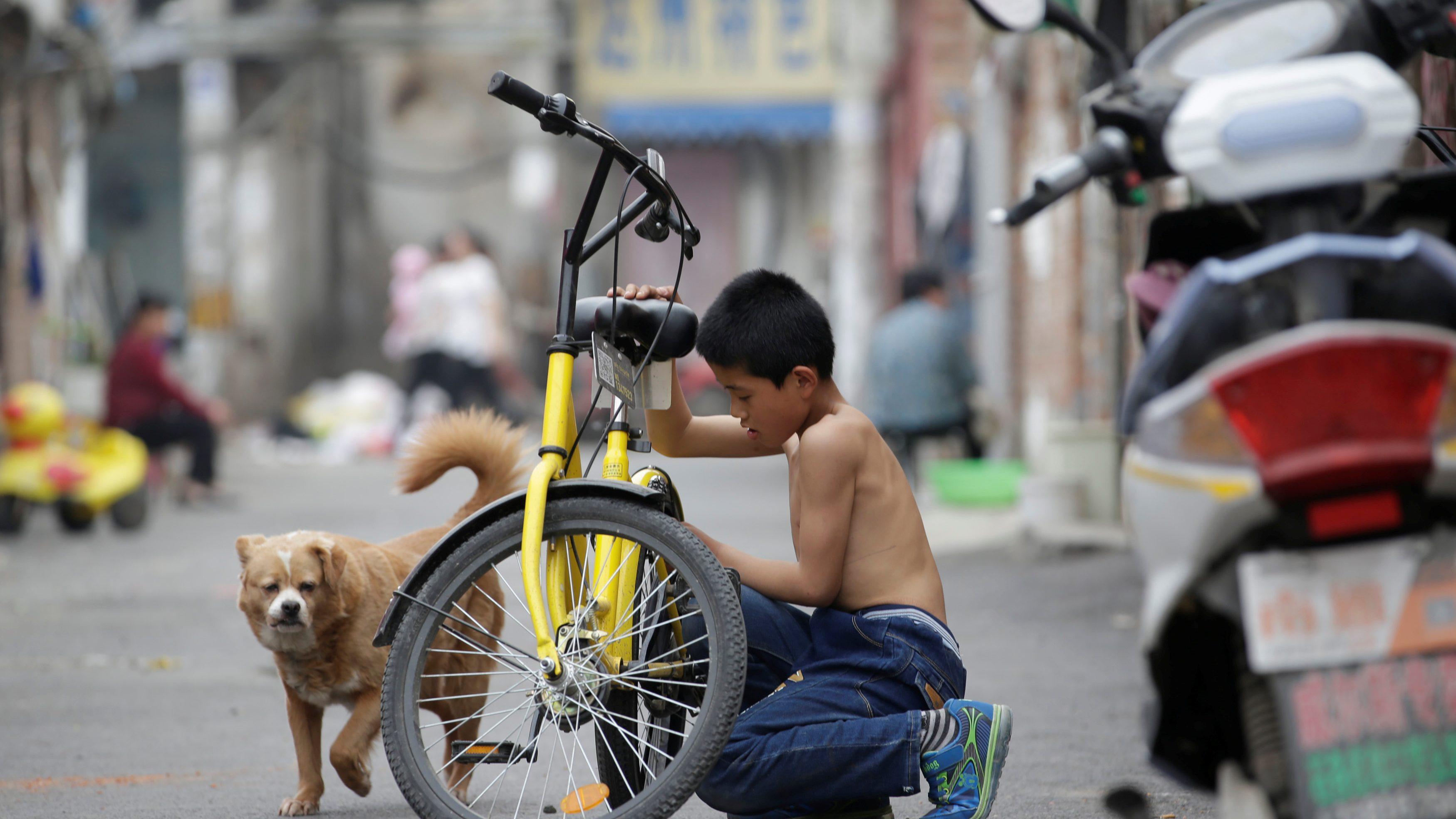 China's sharing economy