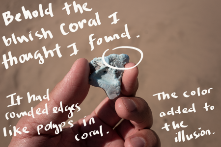 """This is the third photo of a hand holding a plastic rock. It's bluish in color. There's handwriting over the photo that reads: """"Behold the bluish coral I thought I found. It had rounded edges like polyps in coral. The color added to the illusion."""""""