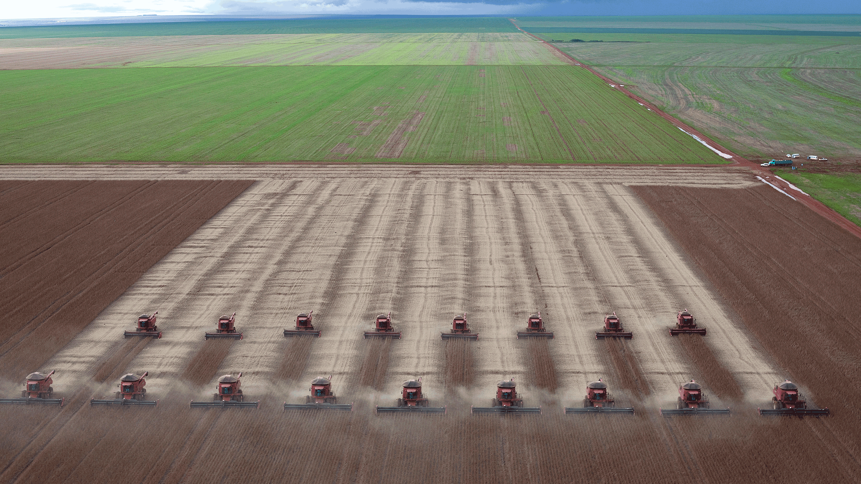 An aerial photograph of 18 tractors reaping a soybean field