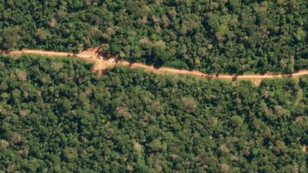 Logging trucks are seen from space in this picture of the Peruvian Amazon rainforest.