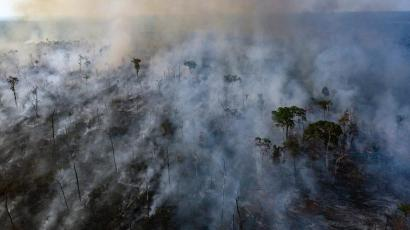 Smoke rises from the Amazon